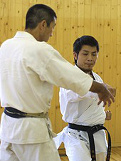 Japan Karate Association :: Dan Techniques
